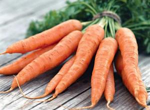kak-hranit-morkov-zimoj