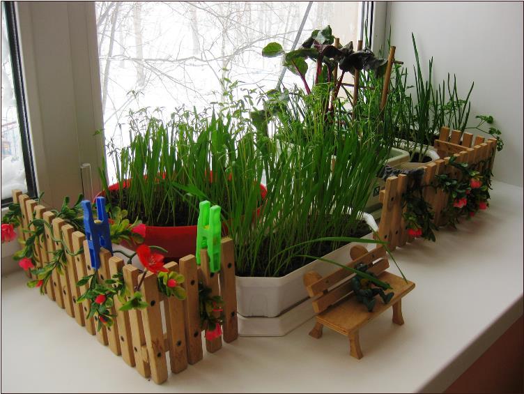 Огород-на-подоконнике-зимой