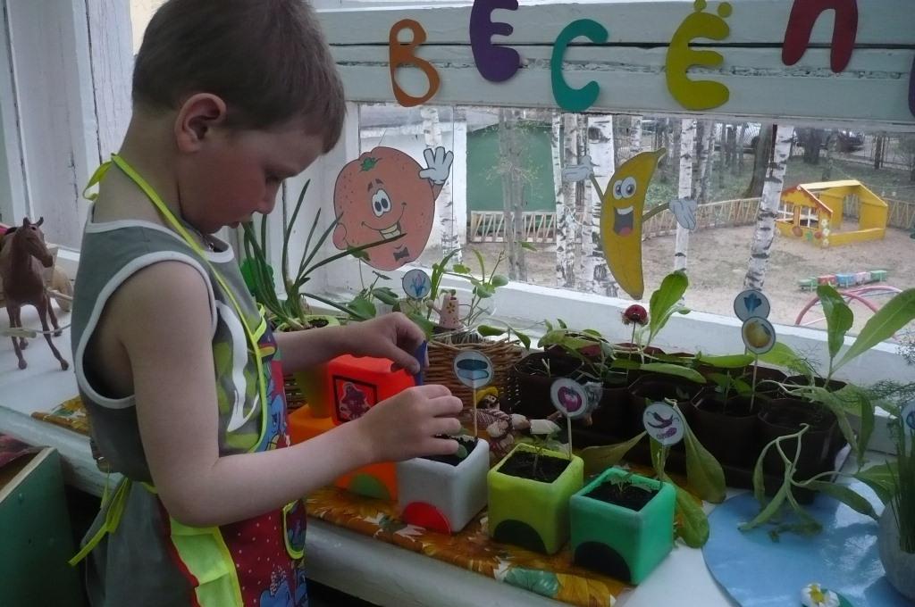 Грунт и семена подмосковья