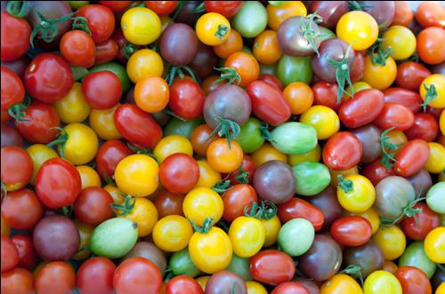 cherry-tomatoes4444