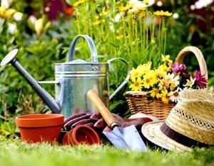 Сад-огород-S