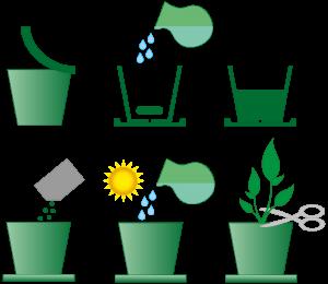 инструкция-зелень