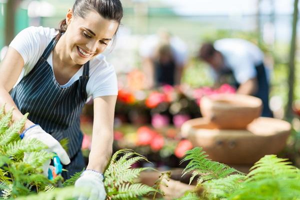 календарь садовода и огородника на июль 2016 года