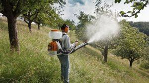 обработка яблонь от вредителей осенью
