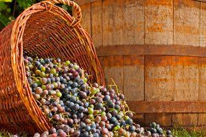 domashnee-vinogradnoe-vino-jpg3_