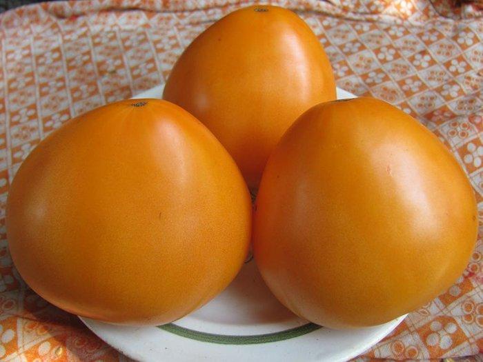 томат оранжевое сердце характеристика и описание сорта