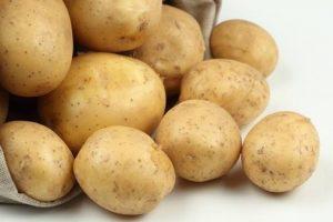 картофель адретта описание сорта фото отзывы