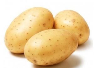 картофель зекура описание сорта фото отзывы