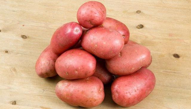 картофель журавинка описание сорта фото отзывы