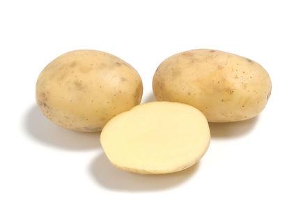 картофель метеор описание сорта фото отзывы