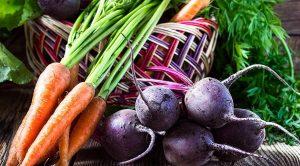 Когда убирать морковь и свеклу в Подмосковье?