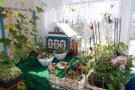 Миниатюра к статье Огород на окне в детском саду. Оформление своими руками
