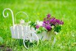 Миниатюра к статье Посадочный календарь на [year] год садовода и огородника