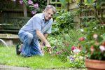 Миниатюра к статье Лунный календарь на апрель [year] года садовода и огородника.