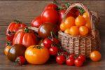 Миниатюра к статье Лучшие сорта томатов для теплиц