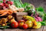 Миниатюра к статье Лунный посевной календарь на февраль [year] года садовода и огородника