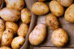 Миниатюра к статье Как подготовить картофель к весенней посадке