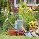 Миниатюра к статье Красивый сад и огород своими руками