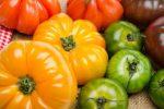Миниатюра к статье Лучшие сорта томатов на [year] год