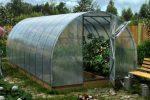 Миниатюра к статье Уход за теплицей из поликарбоната после сбора урожая осенью