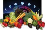 Миниатюра к статье Таблица лунного посевного календаря на [year] год