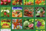 Миниатюра к статье Посевной календарь для средней полосы России на 2018 год — что и когда сеять
