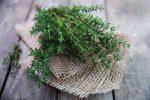 Миниатюра к статье Тимьян, уход и выращивание в открытом грунте