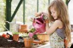 Миниатюра к статье Лунно посевной календарь садовода огородника [year] (Украина)