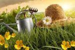 Миниатюра к статье Посевной календарь на [year] для огородников Ростовской области