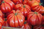 Миниатюра к статье «Американский ребристый» — томат любительский, и на любителя