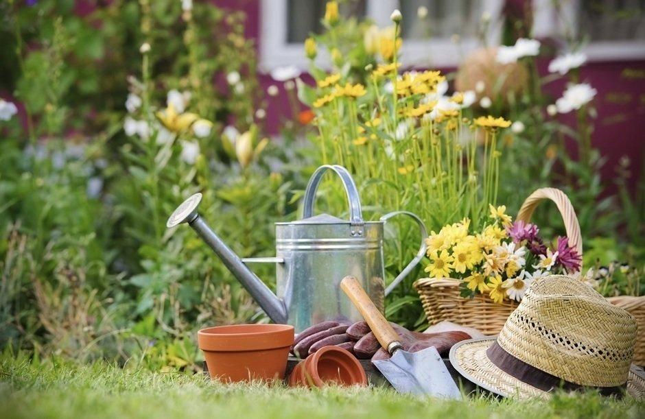 Поделки для сада и огорода своими руками: несколько креативных идей