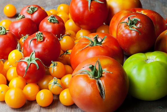 Сорта-томатов-устойчивых-к-фитофторозу