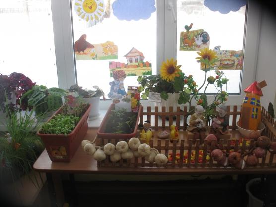 Огород в детском саду оформление своими руками