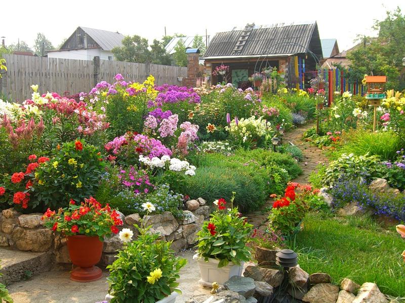 красивые дачи с цветами фото