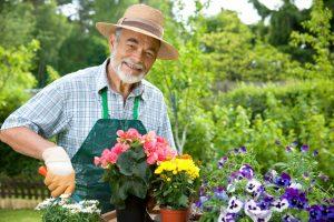 Благоприятные дни для посадки цветов семенами и луковицами по лунному календарю в 2020 году