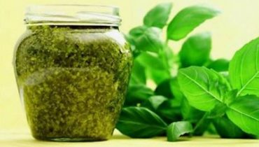 как заготовить базилик на зиму чтобы сохранить витамины