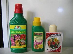 Удобрения для фаленопсиса