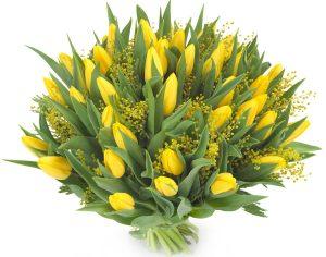 Тюльпаны дома