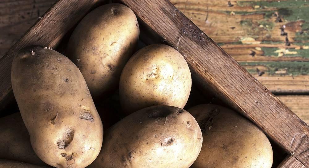 Картошка в ящике