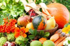 Осенние плоды