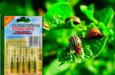 Препарат Колорадо от колорадского жука
