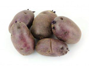 Сорт картофеля черного цвета