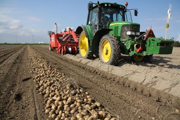 способы увеличения урожая картофеля
