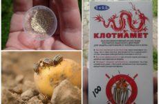 Клотиамет от колорадского жука