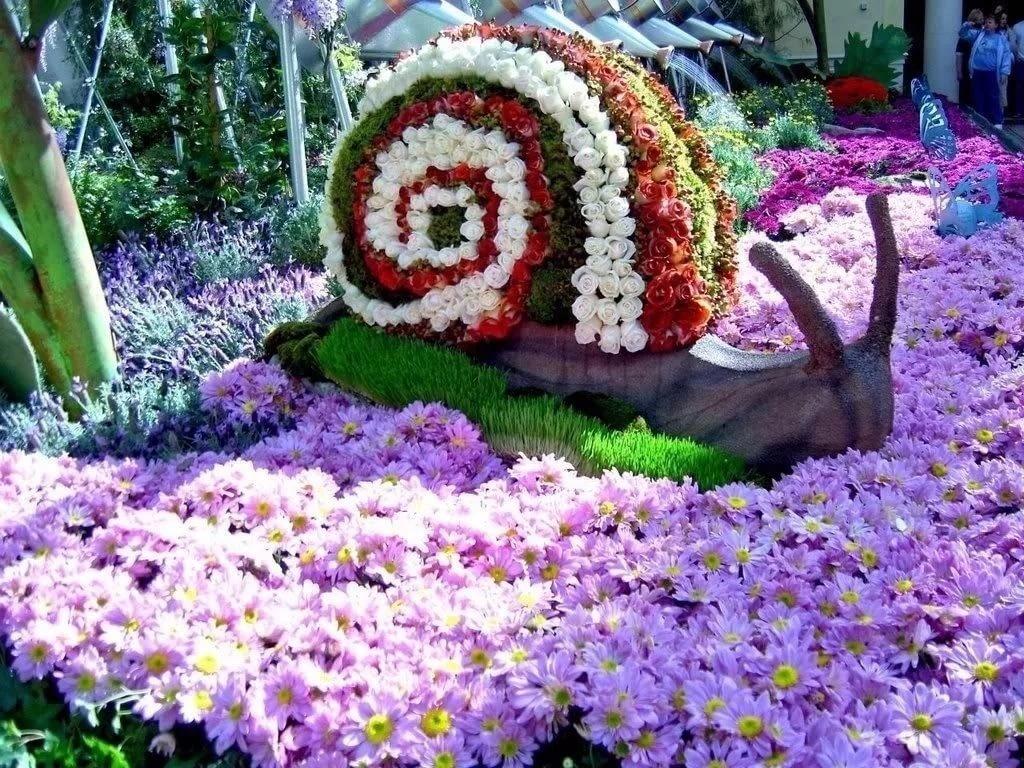 химера картинки цветников в саду своими руками все они