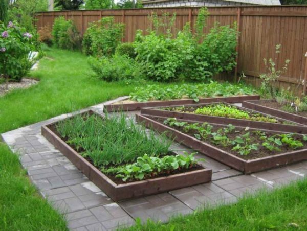 Огород в частном доме