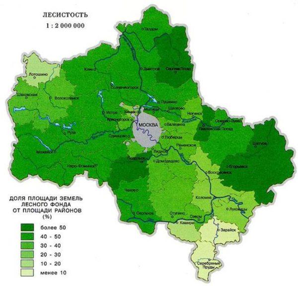 карта леса