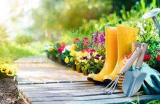 Посадочный календарь садовода и огородника